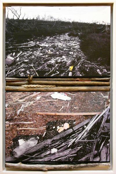 danilo sartoni  paysages revisit u00e9s  lyon
